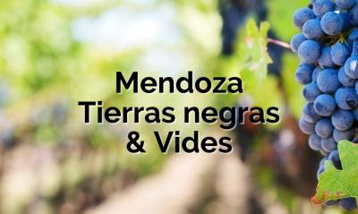 Mendoza: Tierras negras y vides